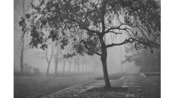 Современный пикториальный романтизм в пейзажах малой родины Константина Чемериса