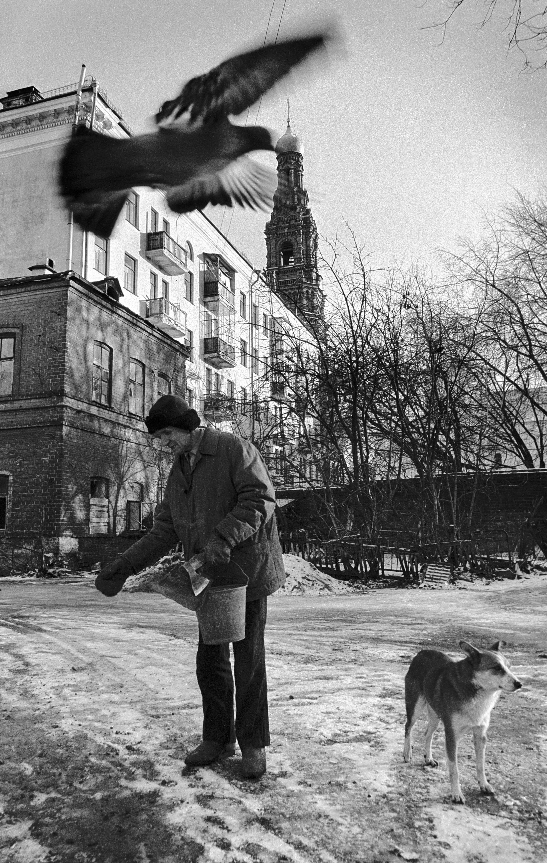 «Проявление прошлого» Евгения Канаева