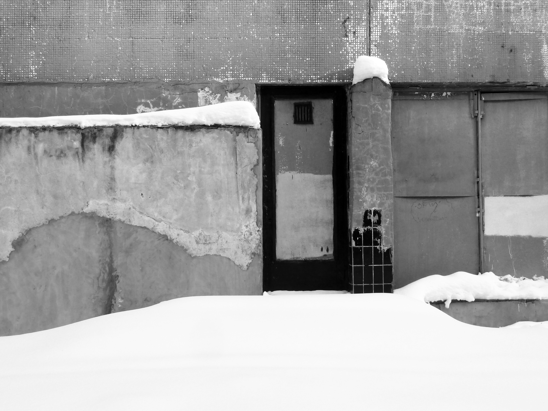 Неочевидная красота в объективе Эльвиры Кошман